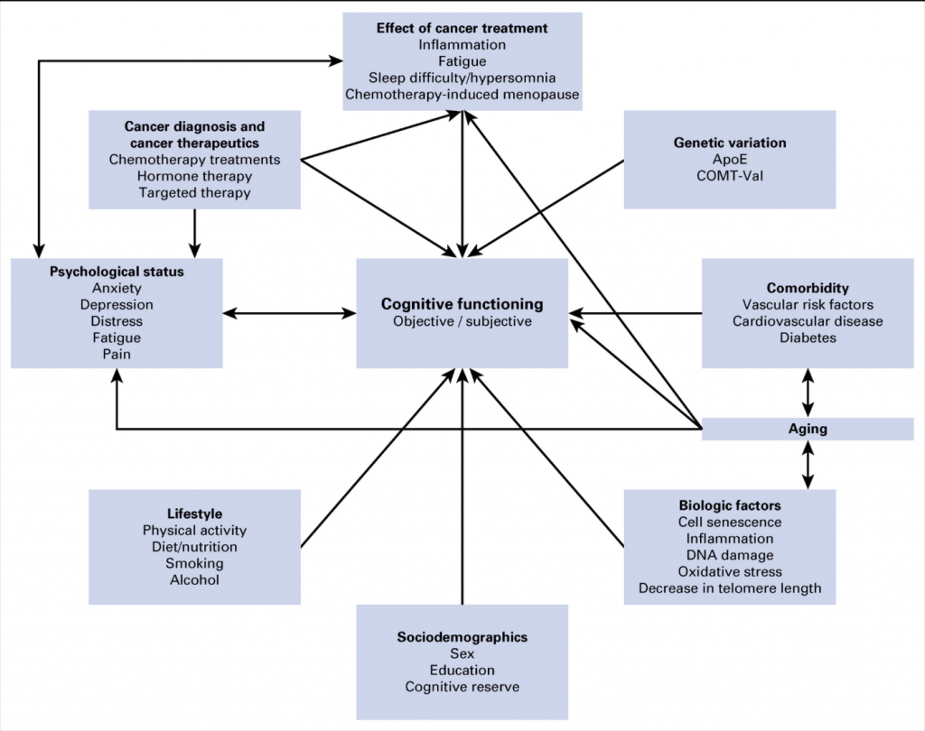 Persistent cognitive impairment after treatment can have significant  negative effects including reduced adherence to oral medications, ...